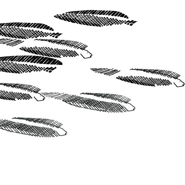 sardinky 134